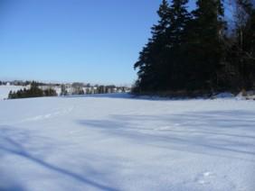kathy-winter-view.jpg